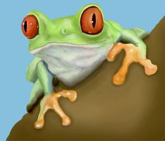 Tree Frog Digital Painting by theandyman93