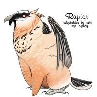 Bearded Vulture by Alyssa-Rice