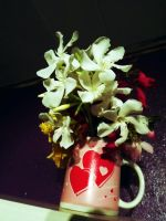 Flowers from that girl I love2 by kitty1321