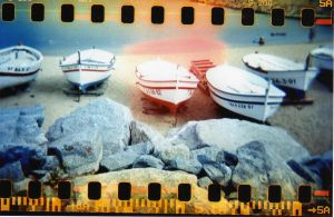 holga IX by nhura