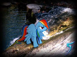 Rainbow Dash is Not Amused by TabbyDerp