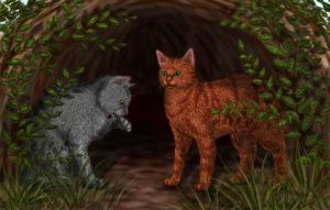 Firepaw and Graypaw by Alisa222