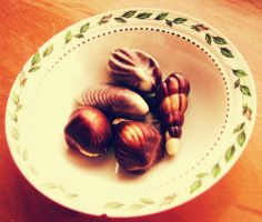 Chocolate Shells by 8hollyberry