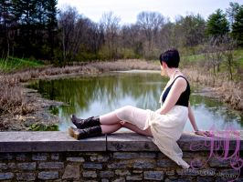 Pond Overlook by photographs-by-day