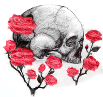 Skull and roses by x-612