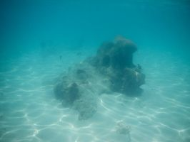 Bermuda 059  Underwater Stocks by FairieGoodMother