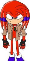 Whiplash The Echidna by HyperactiveYouth