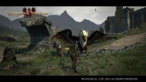 Dragon's Dogma Screenshot #1 by Slydog0905
