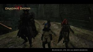 Dragon's Dogma - Arisen and Pawns by Sad-Panda-46
