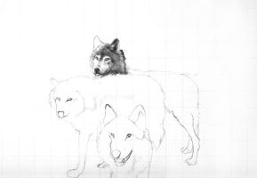 Wolf Pack-WIP-8.17.2007 by chandito