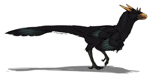 Raven-style theropodal dragon by umbbe