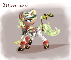 Officer wear by Equie