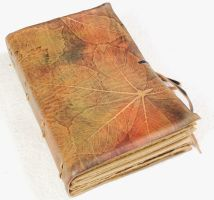 Colorful leaves journal by gildbookbinders