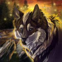 icon comm Roadwolf by WolfRoad
