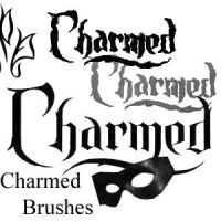 Charmed Brushes by HollisterCo