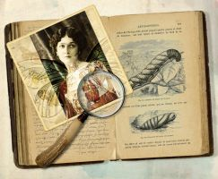 The Lepidopterist's Journal by hogret