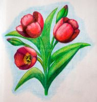 Tulips by Liuanta