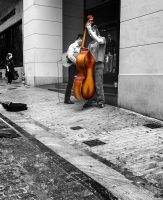 Viola On The Road by etsap