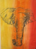 Colourful Elephant by CrazyScorpio