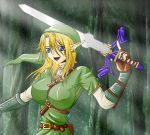 Female Link by War-Off-Evil