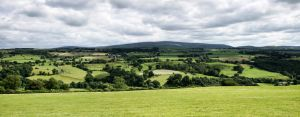 northumberland by whitewinewoman