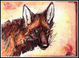 The Jokester ACEO by Nanook94