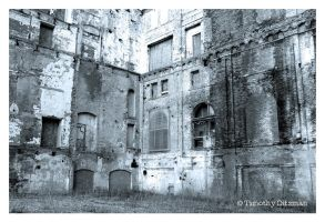 Brewery Ruins by tditzgb