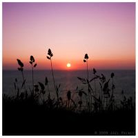 Sunset over Sennen 63-129 by lomoboy
