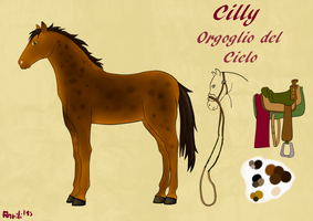 Reference Sheet: Cilly by anrili