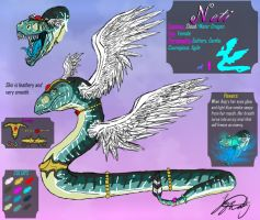 Neti Refrence Sheet by VorpalBeast