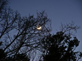 A Whole Crescent Moon by JeremyC-Photography