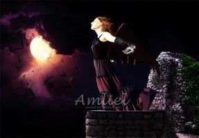 Into the Night by Amliel