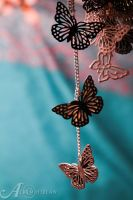 Follow the Butterflies by alkimh