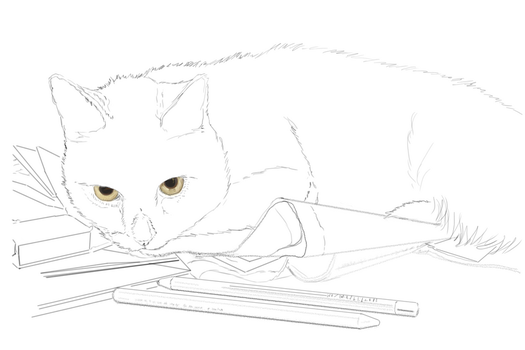 Kitty - Pencils stage by EvilAnemone