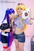 Panty and Stocking 03 by Hitomi-Cosplay