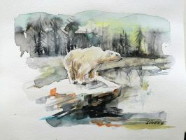 Icebear in watercolor by Lineke-Lijn