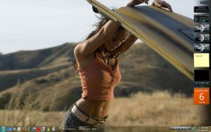 Vista Desktop - Dec 08 by GateFan