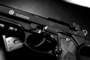 Taurus Arms by SeanJPhoto