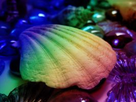 rainbow shell and gems by mysteriousfantasy