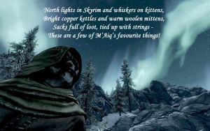 Meeting M'Aiq by the light of Aurora by NorroenDyrd