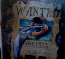 WANTED:One Piece by Sakurafangurl2009