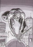 Spider-Man Sketch Card Grays by shinlyle