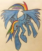 Rainbow Dash Flight Pose by ShadowDash0