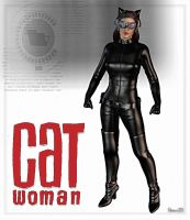 Catwoman by Stone3D