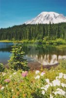 Mt. Rainier by LA-Wastler