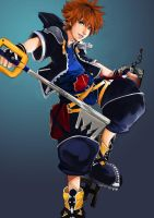 Sora by winterfeuille
