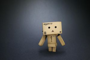 Pr0duct Danbo by i-Cube