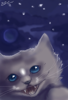 Cat skies mouse by SunsetDragonfly