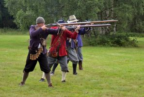 Cannock Chase Military History Weekend 2015 (32) by masimage