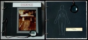 Evidence limited edition book by lauren-rabbit
